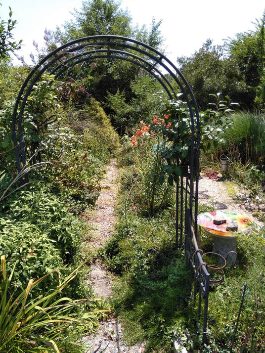 photo of a walkway through a flower garden, with a metal arbor