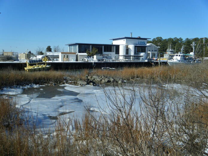 photo with marshland in winter in foreground, building and boats in background