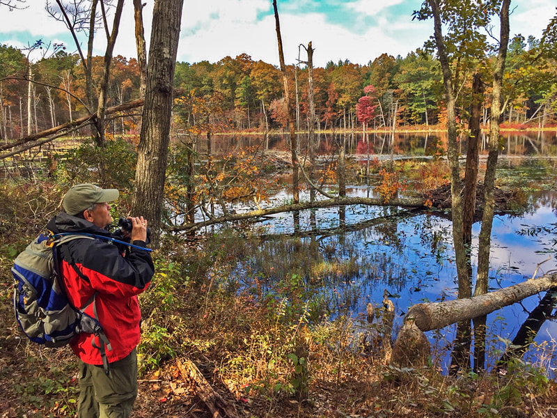 Man in red jacket and backpack stands with binoculars, looking out over a pool of water with autumn colors in surrounding trees